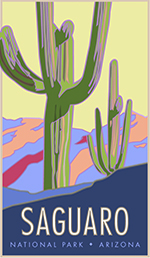 Saguaro National Park poster thumbnail
